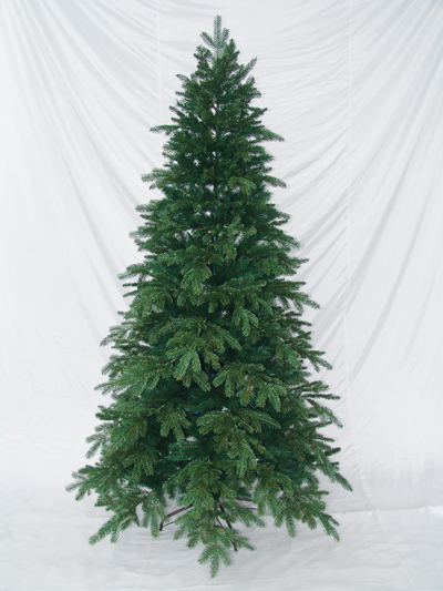 CAROLINA_HEMLOCK__P.E.TREE_s.jpg